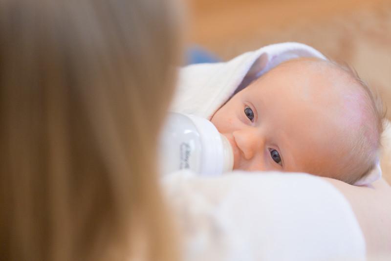 ELP0612 Baby Adeline Clermont Newborn 152.jpg