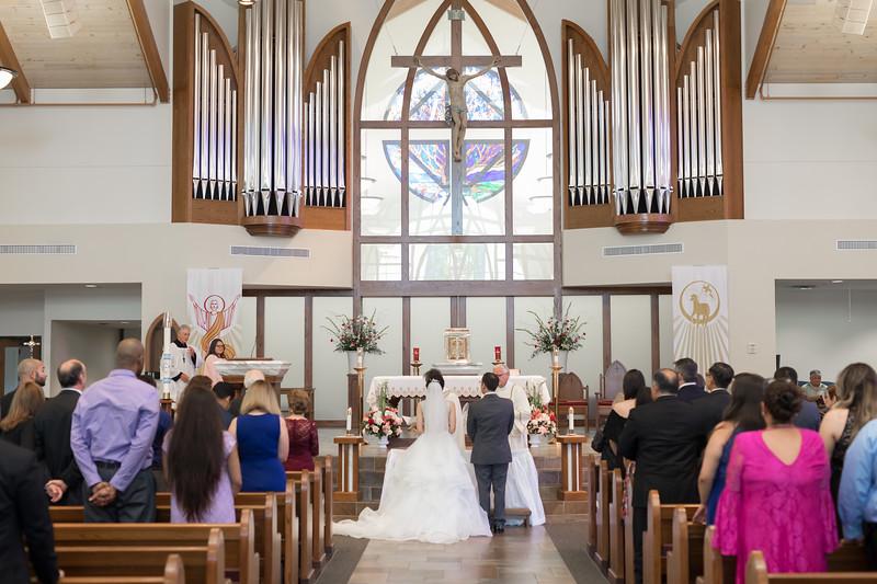 Houston Wedding Photography ~ Norma and Abe-1245.jpg