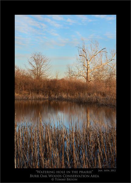 Kansas City Landscape photography