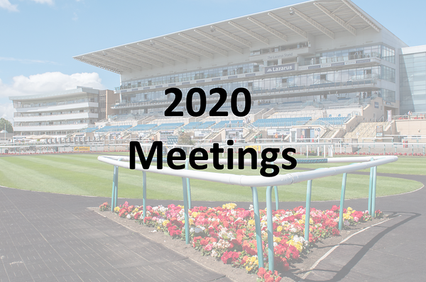 Meetings - 2020