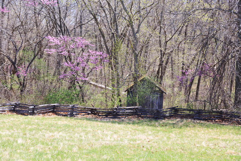 2014_04_18 Missouri Town 1855 022.jpg