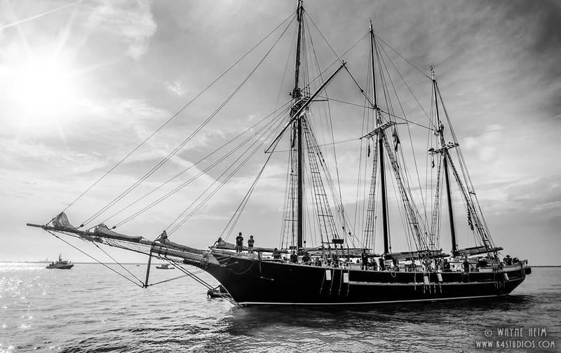 Sails Down   Black & White Photography by Wayne Heim