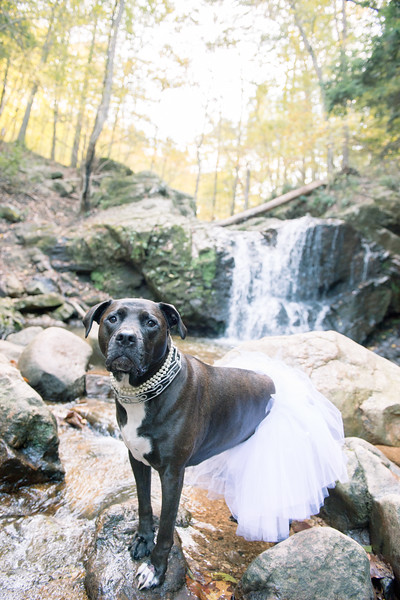 Schiavetto_WeddingPhotographer--20.jpg