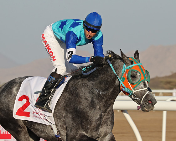 3 Samail Castle Race 1600m