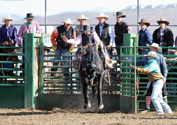 Saddle Bronc ~ Sunday