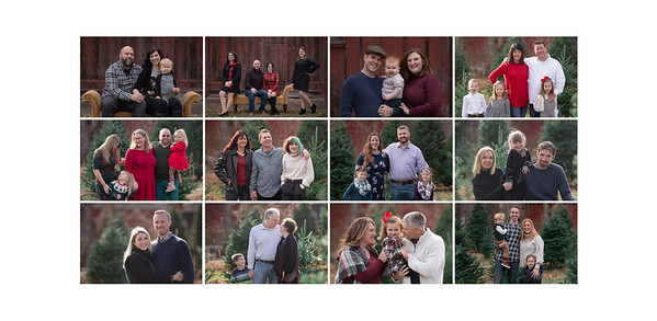 Just A Taste From These Holiday Mini Sessions