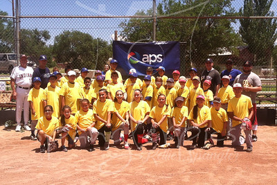 20140716 APS Baseball/Softball Clinic