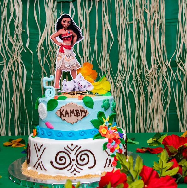 Kambry's 5th Birthday-15.jpg