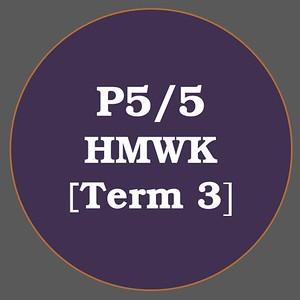 P5/5 HMWK T3