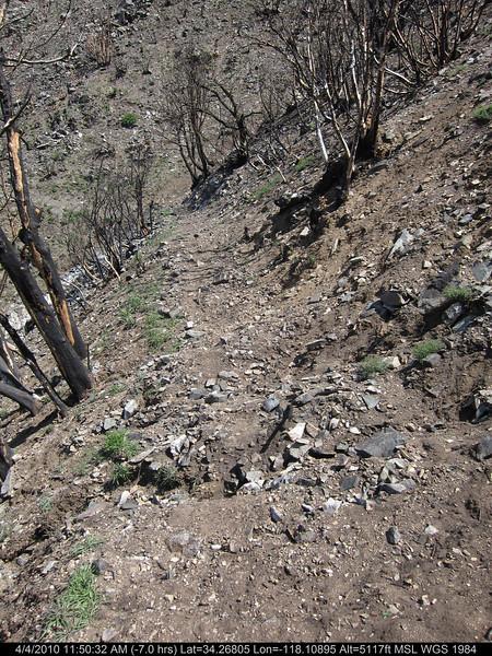 20100404101-Angeles National Forest, Strawberry Peak trail.JPG