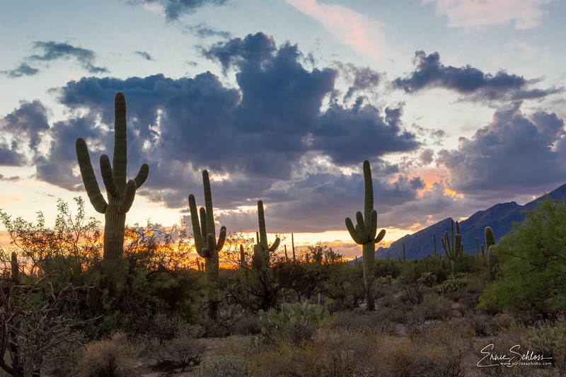 Sabino Sunset 9-1-2018b-.jpg