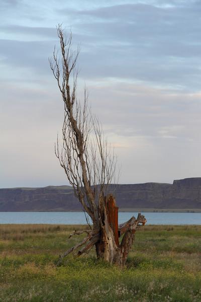 Banks Lake 2012 19.JPG