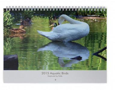 2015 Aquatic Birds Wall Calendar