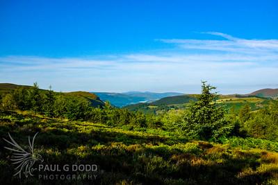 Northeastern Wales, Jul 2014
