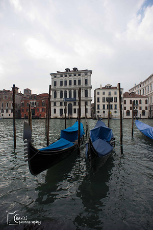 2013.02 Venice (picked)
