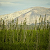 0904113_MammothtoOldFaithful_083