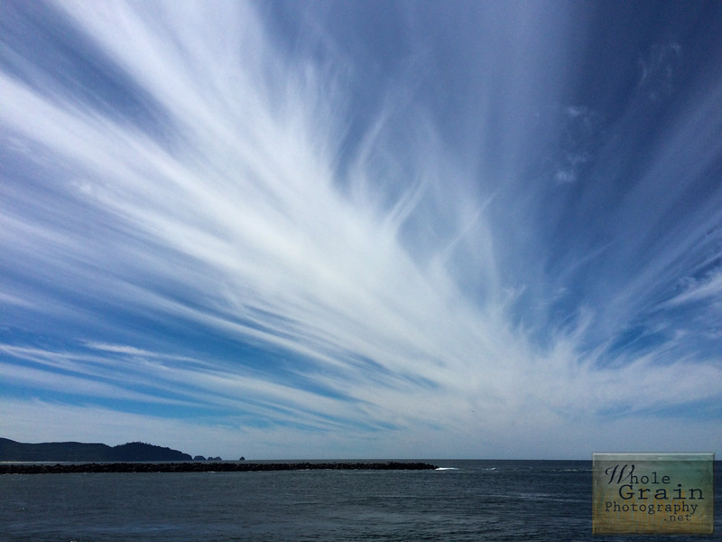 20160619_iPhone Oregon_0101.jpg