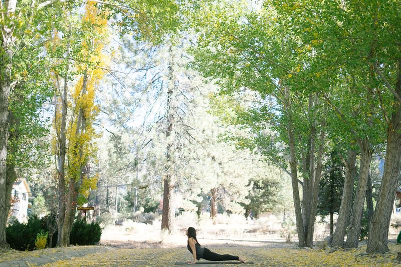 Toni Kuhn Yoga Photography Pine Mountain Club-49.jpg