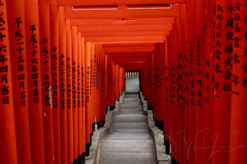 JapanPhotoTour20190204-11.jpg