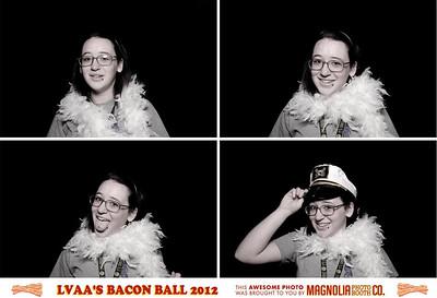 LVL 2012-04-27 Louisville Visual Arts Assoc.