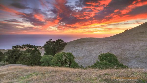 California: Mt. Tamalpais SP