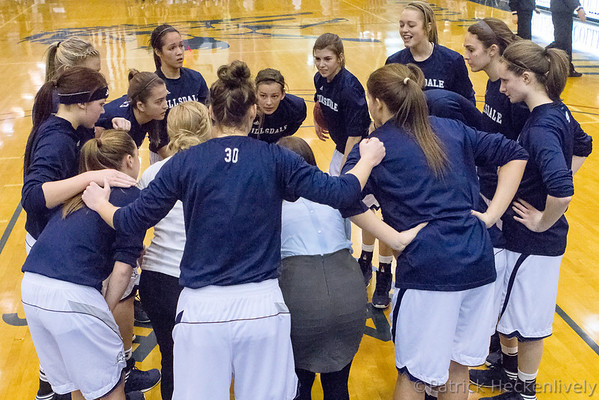 2013-01-26 Hillsdale College Women's Basketball vs. Walsh