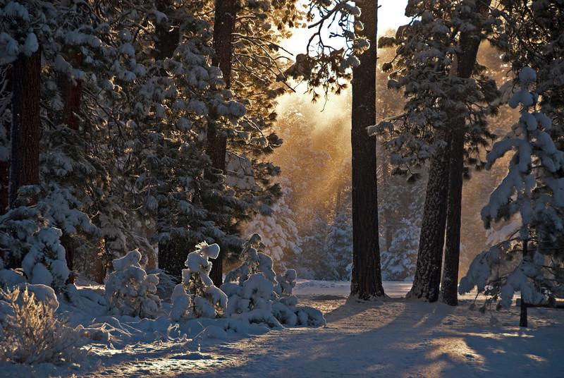BBR-view-Morning SnowMist_KateThomasKeownKTK_DSC0558.jpg