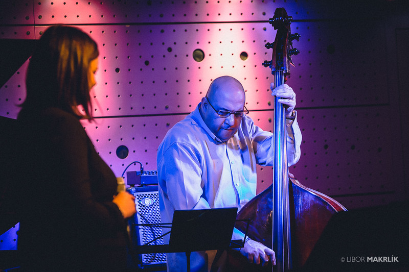 20160301-192310_0006-zuzana-vlcekova-kvartet-jazzdock.jpg