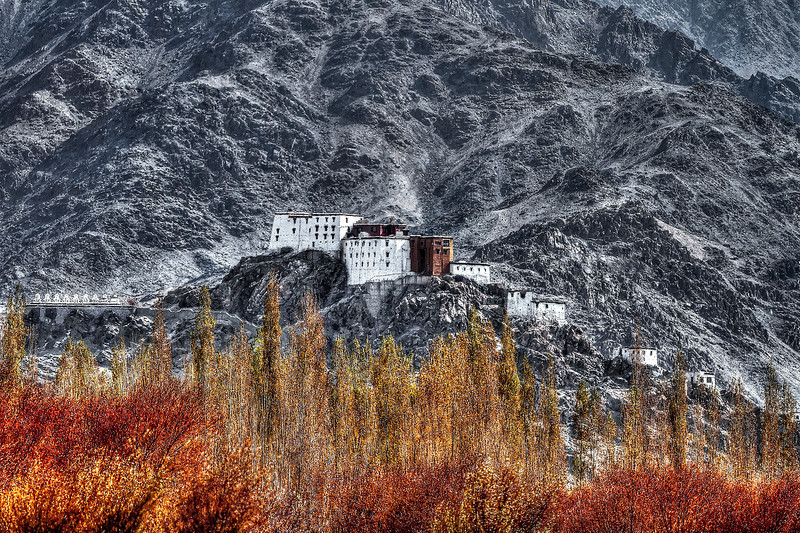 Ladakh-stupa-web.jpg