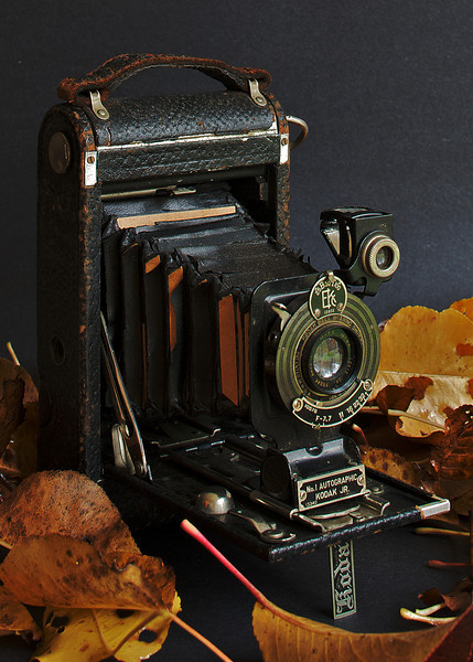 KodakJr.jpg
