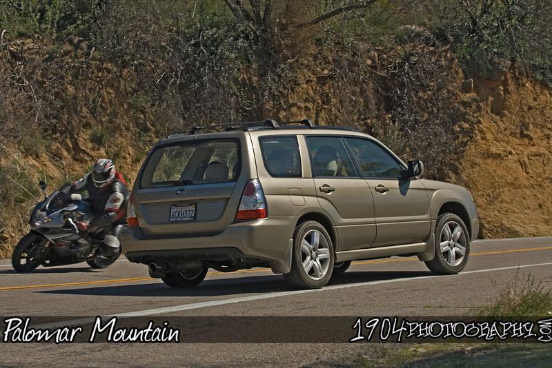 20090307 Palomar Mountain 213.jpg