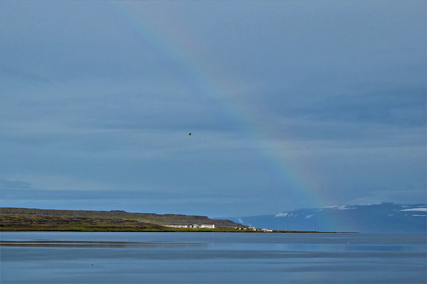 West Fjords - Northeast - Day 6