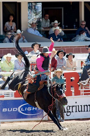 Calgary Stampede Rodeo 2008