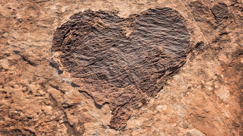 Heart of Utah