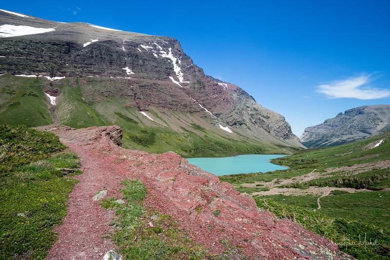 150611_CrackerLake_glacier_national_park_5688.jpg