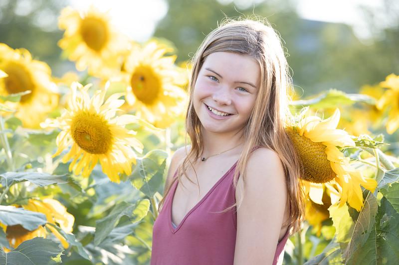 Sunflower Fields 2020