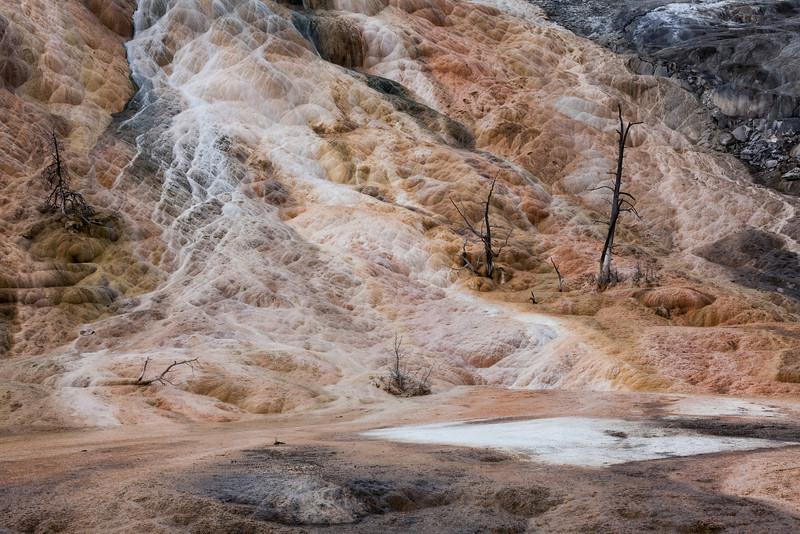 Mammoth Hot Springs, Yellowstone NP
