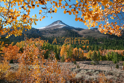 Carson Pass area in the fall