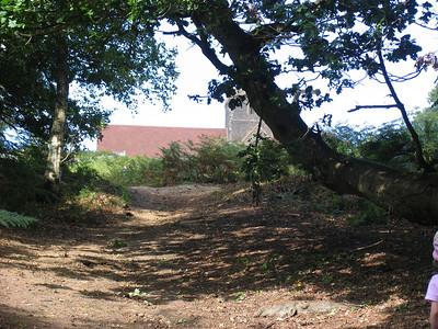 Guildford area walk