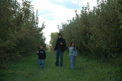 Orchard 2006