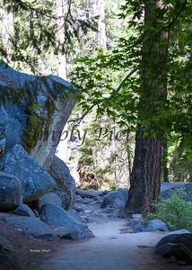 Yosemite060