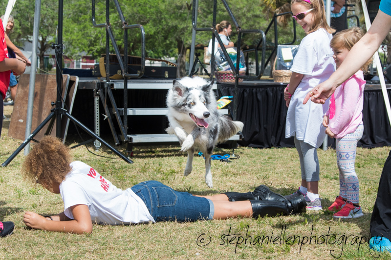 Woofstock_carrollwood_tampa_2018_stephaniellen_photography_MG_8442.jpg