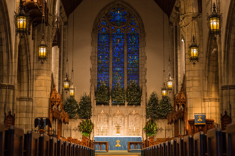 Christmas trees have been erected around the altar for the 2016 Christmas holiday at The Church of Bethesda-by-the-Sea in Palm Beach, Wednesday, December 21, 2016. (Joseph Forzano / The Palm Beach Post)