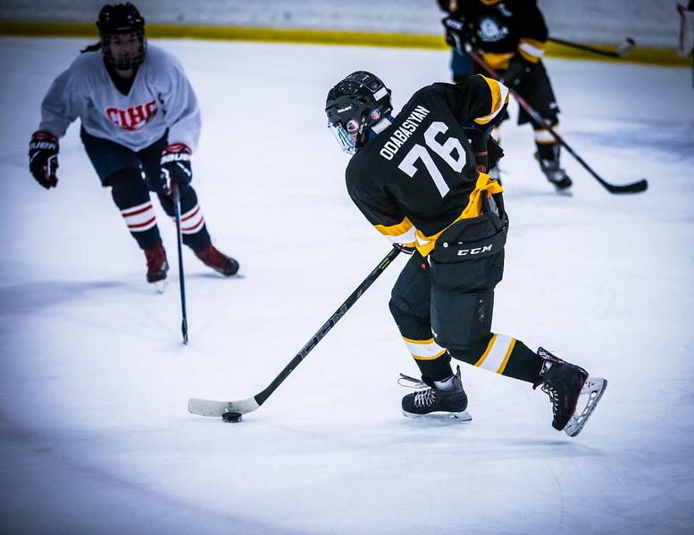 Bruins2-489.jpg