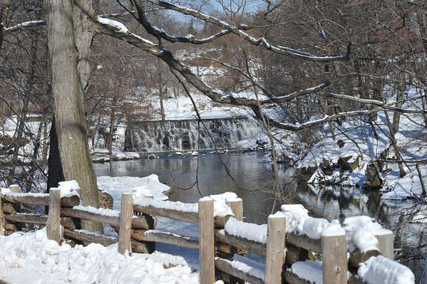 Bronx Zoo (2/10/2014)