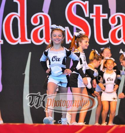 Florida State Fair Championship