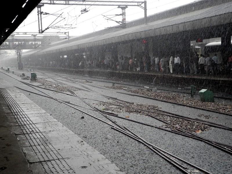 india2011 037.jpg