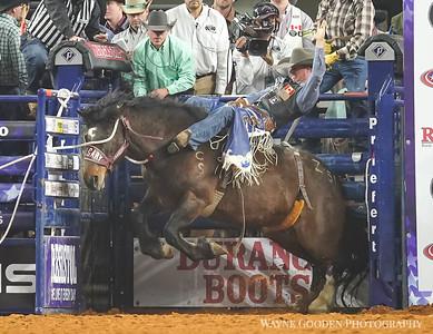 Orin Larsen- The American Rodeo