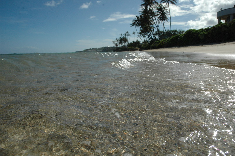 Hawaii - Kahala Beach-90.JPG