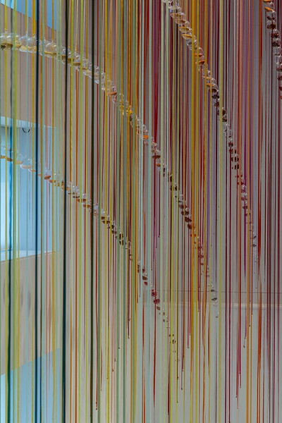 Kunst im «Te Papa» Museum